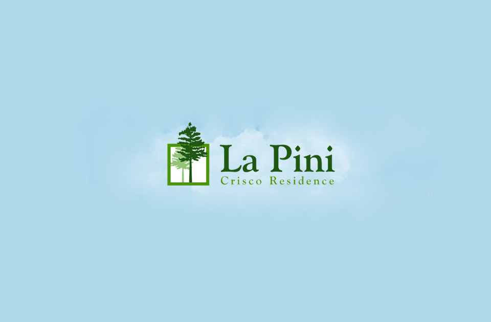 La Pini website design cover